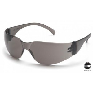 Pyramex S4120S Safety Glasses