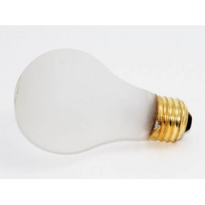 Value Brand 75w Rough Service Light Bulbs