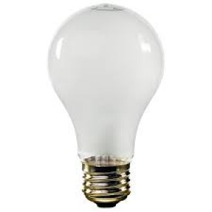 Value Brand 100w Rough Service Light Bulbs